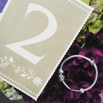 Win a Pandora bracelet worth £150!