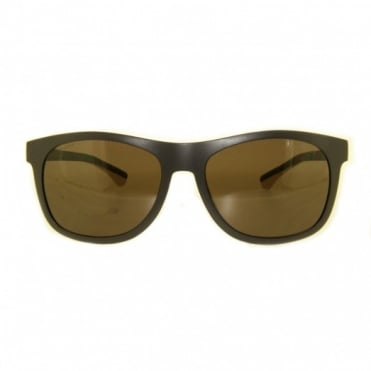Brown Sunglasses EA4034 526073
