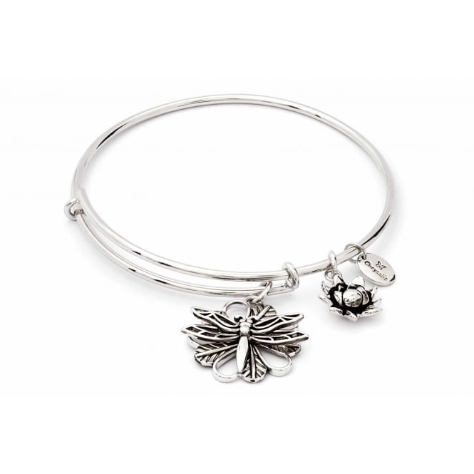 Charmed Rhodium Plated Dragonfly Bangle CRBT1811SP