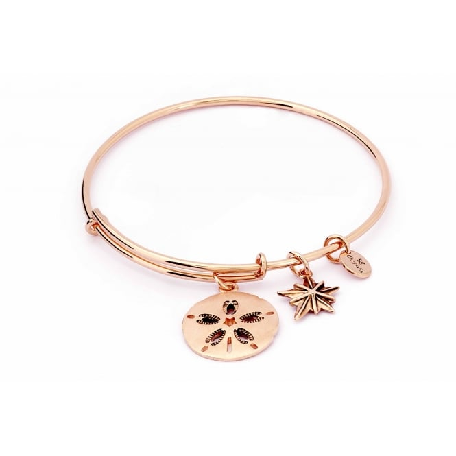 Charmed Rose Gold Plated Sand Dollar Bangle CRBT1812RG