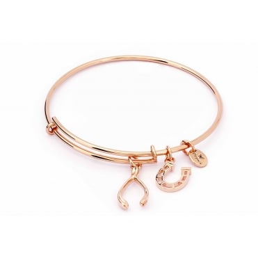 Charmed Rose Gold Plated Wishbone Bangle CRBT1805RG