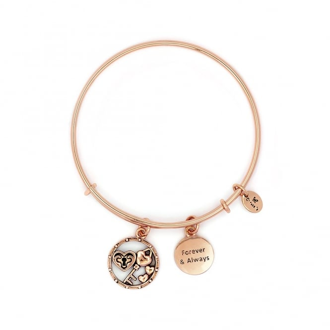 Forever And Always Gold Plated Bangle CRBT2310RG