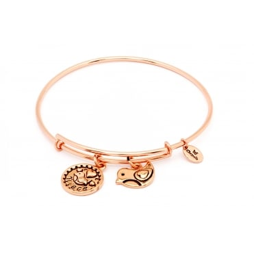 Friend & Family Niece Rose Gold Plated Bangle CRBT0711RG