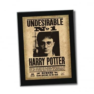 Harry Potter Undesirable Plaque XT0023
