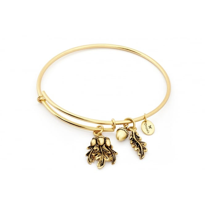 Spirited Acorn Gold Plated Bangle CRBT1202GP