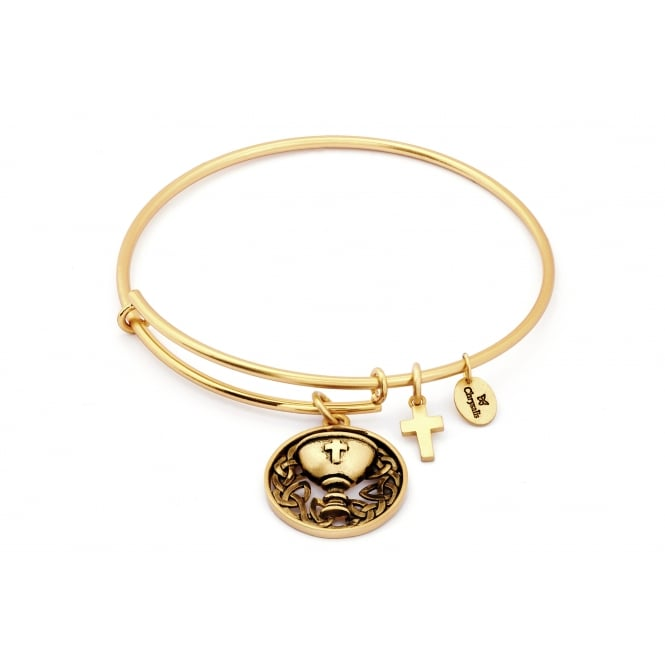 Spirited Chalice Gold Plated Bangle CRBT1213GP