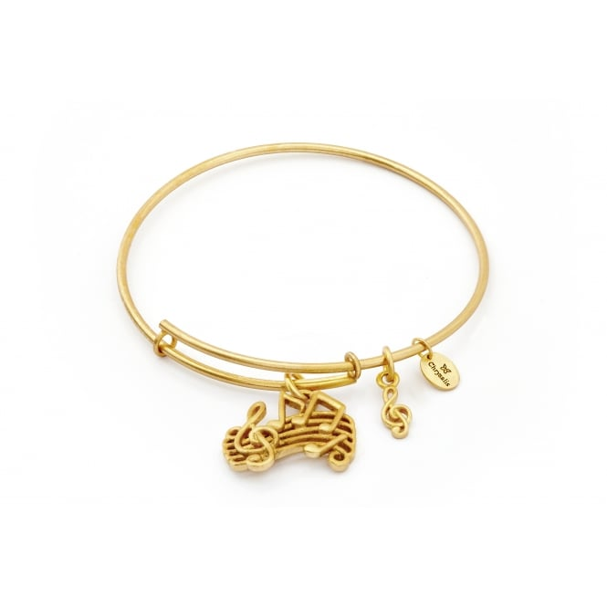 Spirited Music Gold Plated Bangle CRBT1208GP