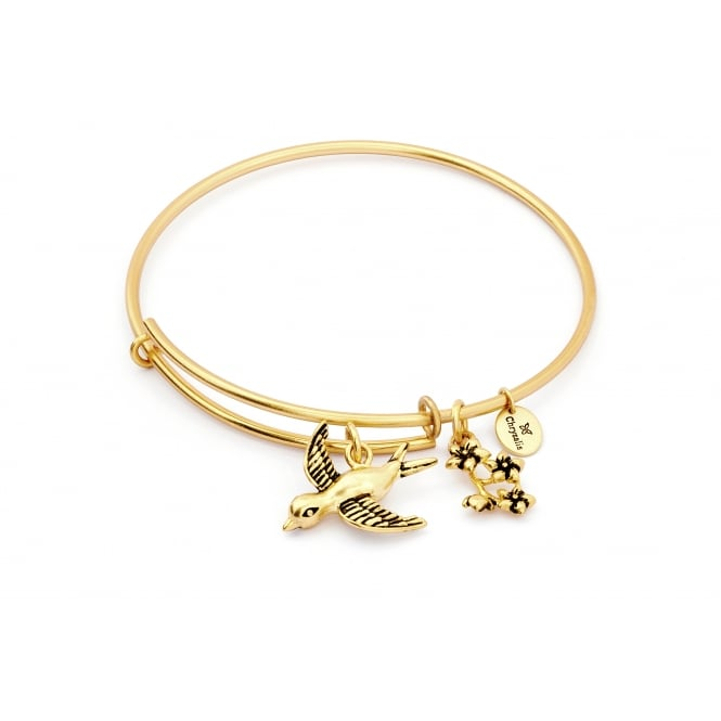 Spirited Sparrow Gold Plated Bangle CRBT1210GP