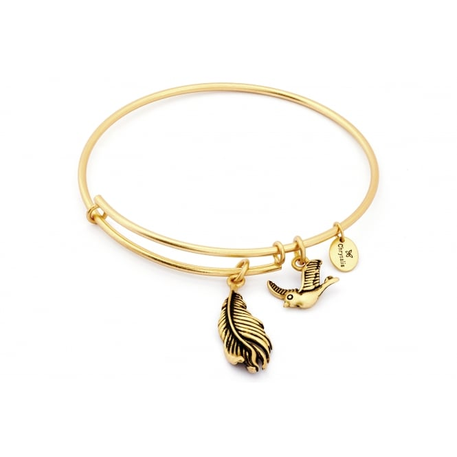 Spirited Virtue Gold Plated Bangle CRBT1209GP
